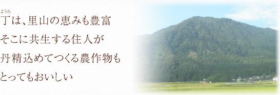 ほたるの里 丁(ようろ)の恵み  丁は、山々に囲まれた内陸盆地にあるため、寒暖の差が大きく、農作